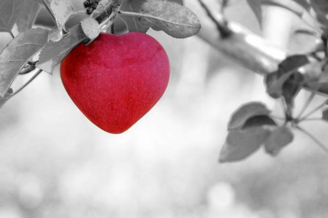 Apple, Liefde, Hart